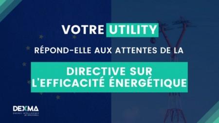 Modifications de la Directive sur l'Efficacité Énergétique : quel impact pour les Fournisseurs d'Énergie?