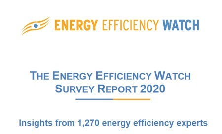 The Energy Efficiency Watch - Survey Report 2021