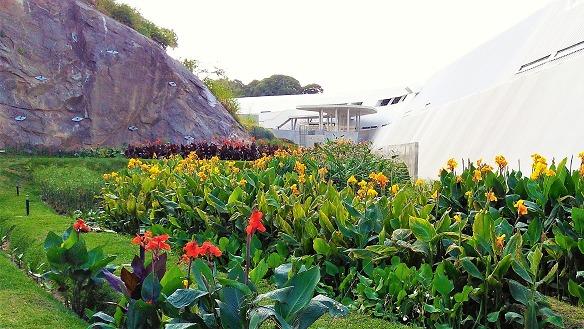 Case study Filtering Gardens