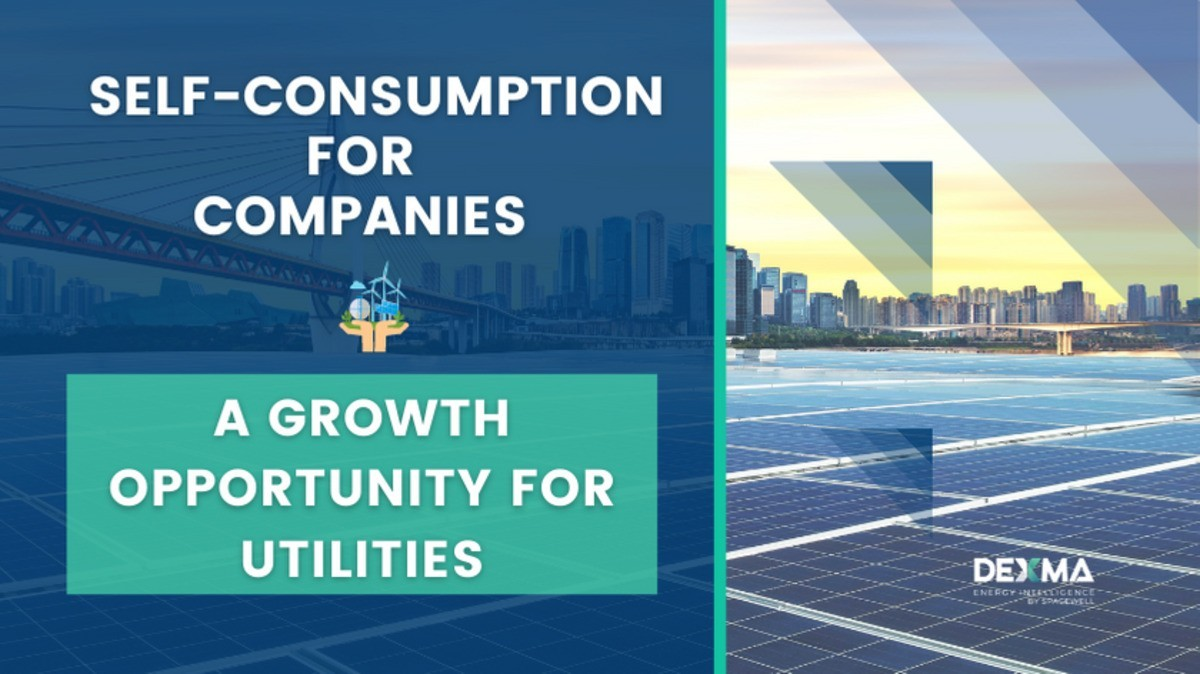 Energy Self-Consumption Products: The New Trend among Utilities