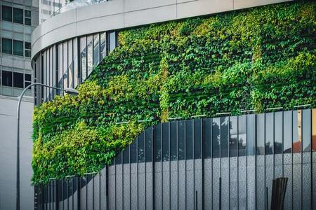 Insights and Tips for Green Building Construction