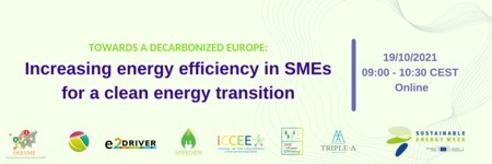 Towards a decarbonized Europe: Increasing energy efficiency in SMEs for a clean energy transition