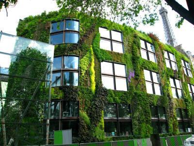 Techos verdes y jardines verticales las nuevas soluciones for Jardines verticales construccion