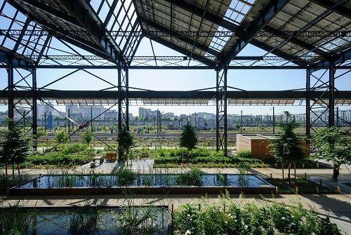 Jardins couverts à la halle Pajol à Paris - Crédit: Arnaud Bouissou TERRA