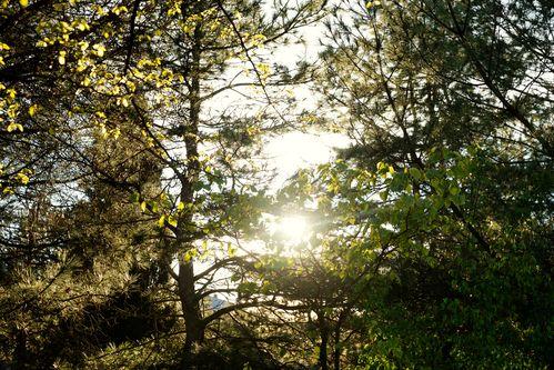 source de lumière naturelle