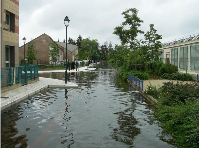 La capacité de renaturation des interstices urbains (oasis urbaines) pour des politiques publiques résilientes