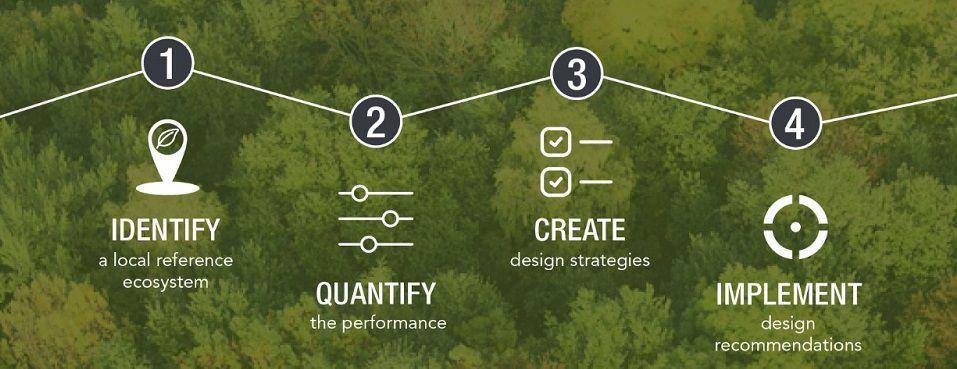 Quatre étapes pour passer d'un sol d'usine à un sol de forêt.