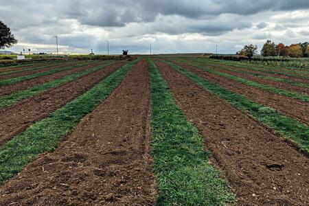 Sur le chemin de la « zéro artificialisation nette » des sols