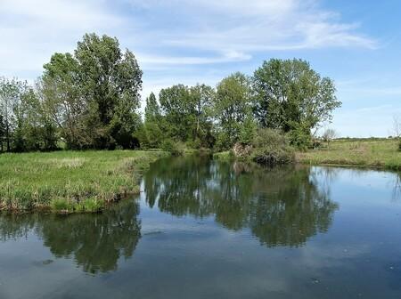 Les politiques des collectivités pour les zones humides : quels enseignements ?