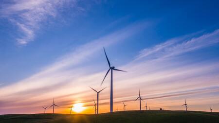 Accompagner les collectivités pour élaborer leur Contrat de relance et de transition écologique (CRTE)