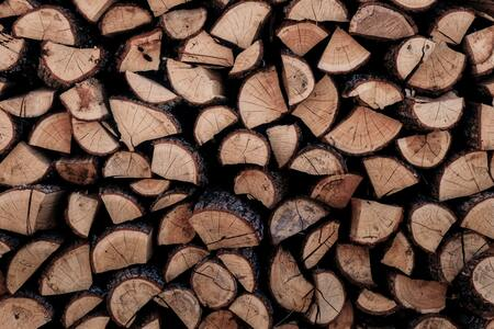 La filière bois doit quadrupler sa part de marché en France en dix ans
