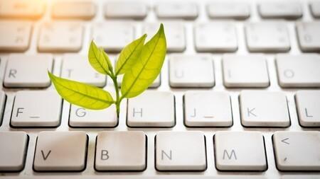 Numérique responsable : l'indispensable sécurité numérique