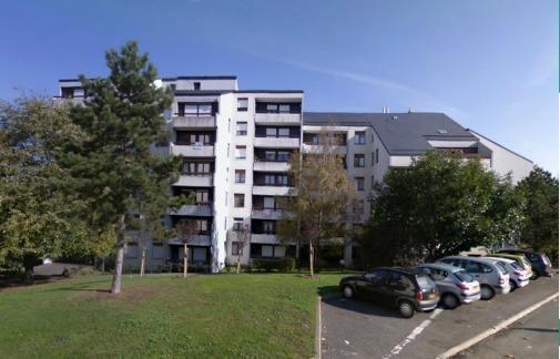 Le Bois du Coudray, Le Coudray Montceaux (91)
