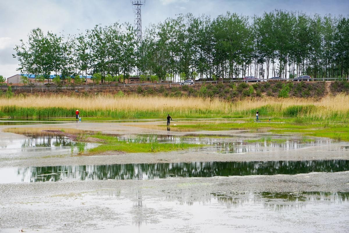 Changyuan River Wetland Natural Park