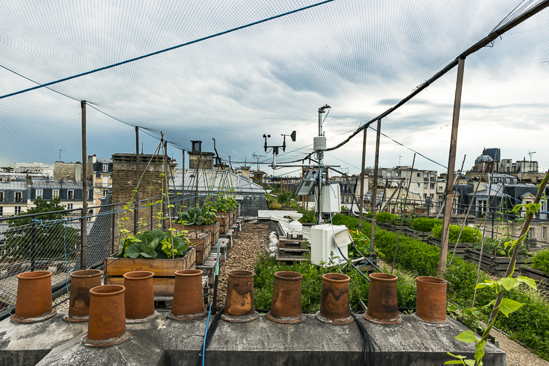 premi re dition des troph es de l 39 agriculture urbaine de la ville de paris construction21. Black Bedroom Furniture Sets. Home Design Ideas