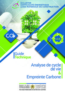 Guide Technique : Analyse de Cycle de Vie et Empreinte Carbone